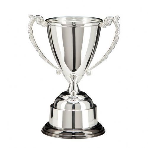 Warwick Silver Plated Cup 235mm
